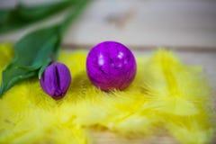 Макрос пасхальных яя, на желтых пер Стоковые Изображения RF