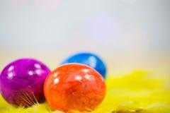 Макрос пасхальных яя, на желтых пер Стоковое Изображение