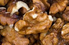 Макрос предпосылки грецкого ореха Стоковая Фотография