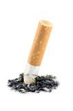 макрос приклада золы изолированный сигаретой Стоковые Фотографии RF