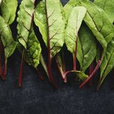 Макрос снятый зеленых цветов свеклы младенца vegetable Стоковое фото RF