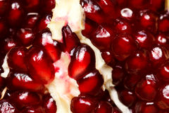 Макрос снятый семян гренадина Стоковые Фотографии RF