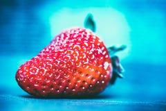 Макрос снял красной клубники на голубой предпосылке Стоковая Фотография RF