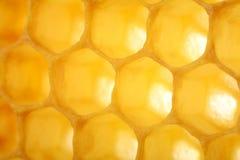 Макрос сота как предпосылка Продукты пчеловодства Apitherapy Стоковое Изображение RF