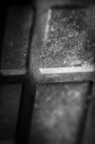 Макрос специализированной части окна Стоковое фото RF
