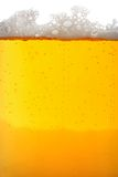 макрос стекла пива Стоковое фото RF