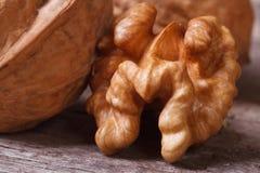 Макрос стерженя грецкого ореха на деревянном столе Стоковая Фотография