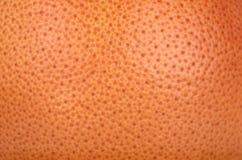 Макрос текстуры грейпфрута Стоковое фото RF