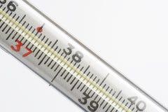 Макрос термометра Стоковая Фотография