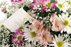 макрос цветка предпосылки Стоковая Фотография RF