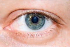 макрос человека глаза Стоковое Изображение RF