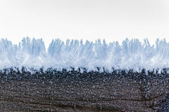 Макрос Frost Стоковое фото RF