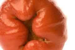 макрос guava яблока Стоковые Изображения