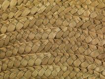 Макрос II соломенной шляпы стоковая фотография rf