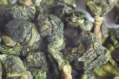 Макрос Oolong зеленого чая Стоковая Фотография RF