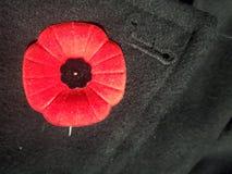 Мак день памяти погибших в первую и вторую мировые войны стоковые изображения rf