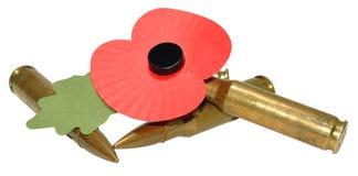 Мак и пули день памяти погибших в первую и вторую мировые войны Стоковое Изображение RF