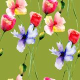мак картины цветков безшовный бесплатная иллюстрация