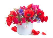 Мак, сладостный горох и цветки мозоли Стоковые Фото