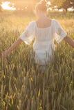 мак цветка одичалый Стоковая Фотография RF