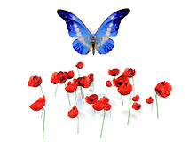 мак цветков бабочки иллюстрация вектора