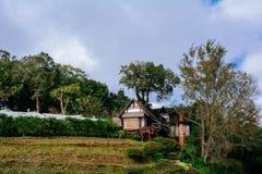 Малая белая деревянная хата вверх на холме Стоковое Изображение RF