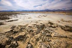 Малая вода в национальном парке Nabq Стоковые Фотографии RF