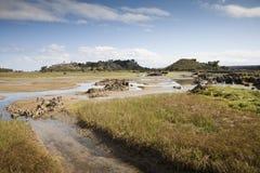 малая вода Стоковые Изображения RF