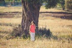 Малая девушка под оливковым деревом стоковые фотографии rf