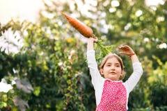 Малая девушка садовничая в саде задворк, есть поленики Стоковое Изображение RF