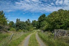 Малая дорога в шведской сельской местности, водя к ферме Стоковые Изображения RF