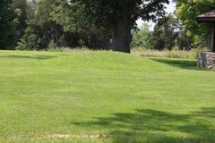 Малая насыпь на большой насыпи змея стоковое изображение