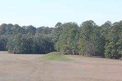 Малая насыпь на парке штата насыпей Kolomoki стоковая фотография rf