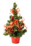 Малая рождественская елка с смычками и конусами Стоковое фото RF