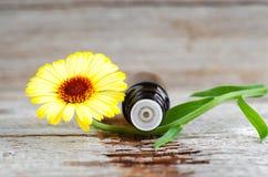 Малая стеклянная бутылка на старой деревянной предпосылке и calendula цветут, закрывают вверх Ингридиенты ароматерапии, курорта и Стоковые Фотографии RF