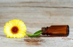 Малая стеклянная бутылка на старой деревянной предпосылке и calendula цветут, закрывают вверх Ингридиенты ароматерапии, курорта и Стоковое Изображение