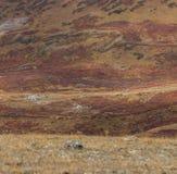 Малая тележка в большом горы Стоковое Изображение