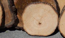 Малая часть отрезанных деревянных журналов Стоковое фото RF