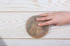 Малая часть отрезанных деревянных журналов Стоковая Фотография