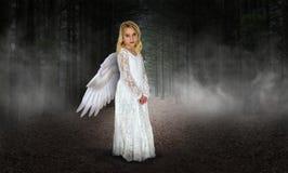 Маленькая девочка Анджел, рай, вероисповедание стоковые фотографии rf