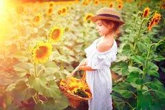 Маленькая девочка в белом платье, соломенной шляпе с корзиной полной солнцецветов усмехаясь на камере в поле  стоковая фотография rf