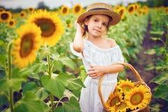 Маленькая девочка в белом платье, соломенной шляпе с корзиной полной солнцецветов усмехаясь на камере в поле  стоковые фото