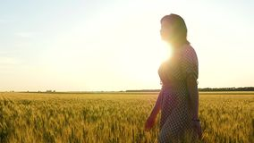 Маленькая девочка в платье идет счастливо в замедленное движение над золотым пшеничным полем, касаясь ее ушам с ее рукой, во врем видеоматериал