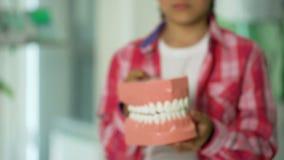 Маленькая девочка держа модель челюсти, зубоврачебные обслуживания для детей, диагноз костоеды акции видеоматериалы