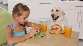 Маленькая девочка есть гамбургер - делить таблицу с ее собакой сток-видео