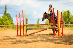 Маленькая девочка жокея делая лошадь скача через барьер Стоковое фото RF