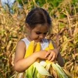 Маленькая девочка играя в кукурузном поле на осени Ребенок держа удар мозоли Сбор с детьми Деятельности при осени для детей стоковое фото