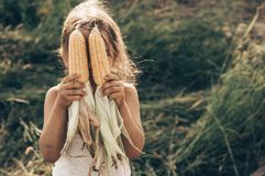 Маленькая девочка играя в кукурузном поле на осени Ребенок держа удар мозоли Сбор с детьми Деятельности при осени для детей стоковое фото rf