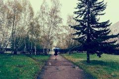 Маленькая девочка идет вдоль зеленых переулков от кустов стоковые фотографии rf