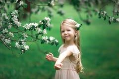 Маленькая девочка идет в сад яблока Стоковые Изображения RF